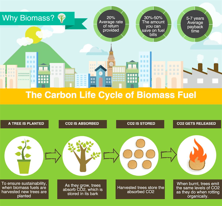 Why Choose Biomass Boilers?